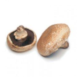 Cogumelos Portobello BIO  200gr