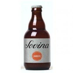 Cerveja com Álcool Amber 330mL