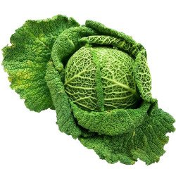 Galician Cabbage