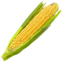 Maçaroca Milho