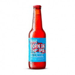 Cerveja Artesanal Born in the IPA 330mL